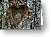 All Tree Greeting Cards - Love 4 All Greeting Card by Steven  Michael