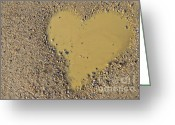 Puddle Photo Greeting Cards - Love In A Muddy Puddle Greeting Card by Meirion Matthias
