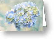 Love Letter Greeting Cards - Love Letter VII Hydrangea Greeting Card by Jai Johnson