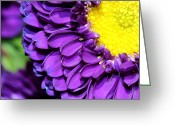 Fine_art Greeting Cards - Love The Purple Flower Greeting Card by Christy Patino