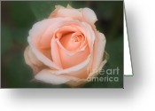 Peachy Greeting Cards - Love you... Greeting Card by Rosy Kueng