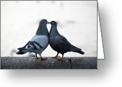 Kissing Greeting Cards - Lovebirds Greeting Card by Oscar Bjarnason