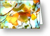 Light Aqua Greeting Cards - Lovely leaves Greeting Card by Toni Hopper