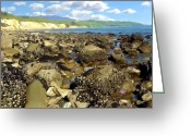 Santa Barbara Digital Art Greeting Cards - Low Tide At Gaviota Greeting Card by Kurt Van Wagner