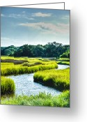 Carolina Greeting Cards - Lowcountry Creek Greeting Card by Drew Castelhano