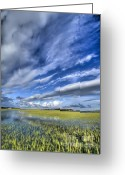 Flood Greeting Cards - Lowcountry Flood Tide and Clouds Greeting Card by Dustin K Ryan