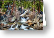 Nevada Greeting Cards - Lower Eagle Falls Emerald Bay Lake Tahoe Greeting Card by Scott McGuire