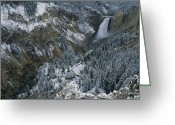 Lower Yellowstone Falls Greeting Cards - Lower Falls Of The Yellowstone River Greeting Card by Norbert Rosing