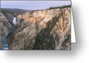 Lower Yellowstone Falls Greeting Cards - Lower Yellowstone Falls In The Grand Greeting Card by Michael S. Lewis