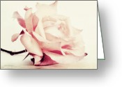 Rosy Greeting Cards - Lucid Greeting Card by Priska Wettstein
