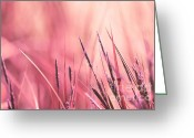 Pink Pastel Greeting Cards - Luminis - s09c - Pink Greeting Card by Variance Collections