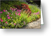 Residential Photo Greeting Cards - Lush garden Greeting Card by Elena Elisseeva