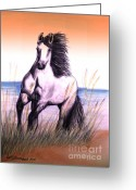 White White Horse Pastels Greeting Cards - Lusitano Thunder By The Sea Greeting Card by Patricia L Davidson 