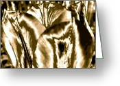 Shimmering Greeting Cards - Lustrous Golden Tulip Greeting Card by Will Borden