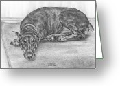 Dobe Greeting Cards - Lying Low - Doberman Pinscher Dog Art Print Greeting Card by Kelli Swan