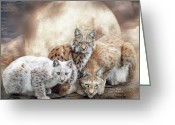 Big Cat Art Prints Greeting Cards - Lynx Moon Greeting Card by Carol Cavalaris