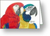 Husband And Wife Greeting Cards - Macaws In Living Color Greeting Card by Sharon Blanchard