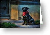 Loyal Greeting Cards - Mack Waits Greeting Card by Suni Roveto