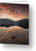 Water Reflections Greeting Cards - Magestic Greeting Card by Jorge Maia