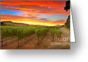Vineyard Digital Art Greeting Cards - Magic Hour Greeting Card by Mars Lasar