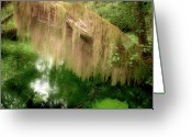 Moist Greeting Cards - Magical Hall of Mosses - Hoh Rain Forest Olympic National Park WA USA Greeting Card by Christine Till