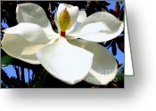 Magnolia Bloom Greeting Cards - Magnolia Carousel Greeting Card by Karen Wiles