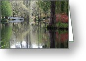 Green Water Greeting Cards - Magnolia Plantation Gardens Series II Greeting Card by Suzanne Gaff