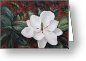 Magnolia Bloom Greeting Cards - Magnolia Greeting Card by Todd A Blanchard