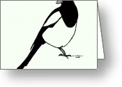 Gallery Print Greeting Cards - Magpie Bird Greeting Card by Karl Addison