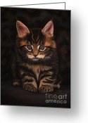 Animalportrait Pastels Greeting Cards - Maine Coon Kitty Greeting Card by Sabine Lackner