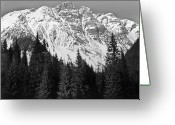 Pine Tree Greeting Cards - Majestic Mountains, British Columbia, Canada Greeting Card by Brian Caissie