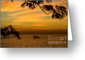 Sailing Cat Greeting Cards - Majestic Sunset Greeting Card by Rene Triay Photography