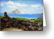 Sacred Photo Greeting Cards - Makapuu Point view of Rabbit Ear Island Greeting Card by Cheryl Young
