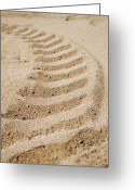 Beige Wall Art Greeting Cards - Making Tracks Greeting Card by Lisa Knechtel