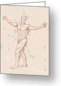 Anatomy Greeting Cards - Male Human Anatomy Greeting Card by Aloysius Patrimonio