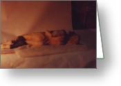 Male Sculpture Greeting Cards - Male nude ... at rest Greeting Card by William Zeidlik