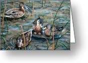 Maine Painting Greeting Cards - Mallards Greeting Card by Brenda Baker