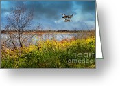 Migrating Bird Greeting Cards - Mallards in The Spring . 7D12643 Greeting Card by Wingsdomain Art and Photography