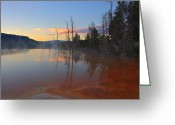 Mammoth. Greeting Cards - Mammoth Hot Springs Sunrise Greeting Card by Yvonne Baur