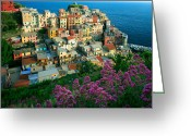 Terraces Greeting Cards - Manarola from above Greeting Card by Inge Johnsson