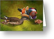 Duckling Greeting Cards - Mandarin Duck family Greeting Card by Thanh Thuy Nguyen