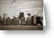 Seagull Photo Greeting Cards - Manhattan over the river Greeting Card by RicardMN Photography