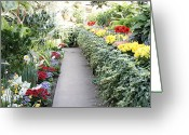 Conservatory Photo Greeting Cards - Manito Park Conservatory Greeting Card by Carol Groenen