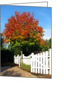 Property Greeting Cards - Maple and Picket Fence Greeting Card by Olivier Le Queinec