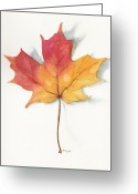 Maine Painting Greeting Cards - Maple Leaf II Greeting Card by Betsy Gray