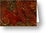 Brown Leaf Greeting Cards - Maple Leaves In The Rain Greeting Card by Tracie Kaska