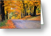 Country Dirt Roads Photo Greeting Cards - Maples of Rupert Vermont Greeting Card by Thomas Schoeller