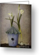 Blue House Greeting Cards - March Greeting Card by Priska Wettstein