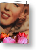Starlet Greeting Cards - Marilyn Greeting Card by Yolanda Travis