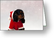 Merry Greeting Cards - Marmaduke on snow background Greeting Card by Jane Rix